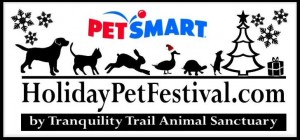 holiday pet festival