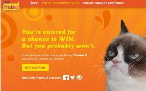 grump cat sweeps