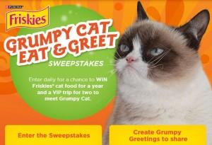 grumpy cat greetings