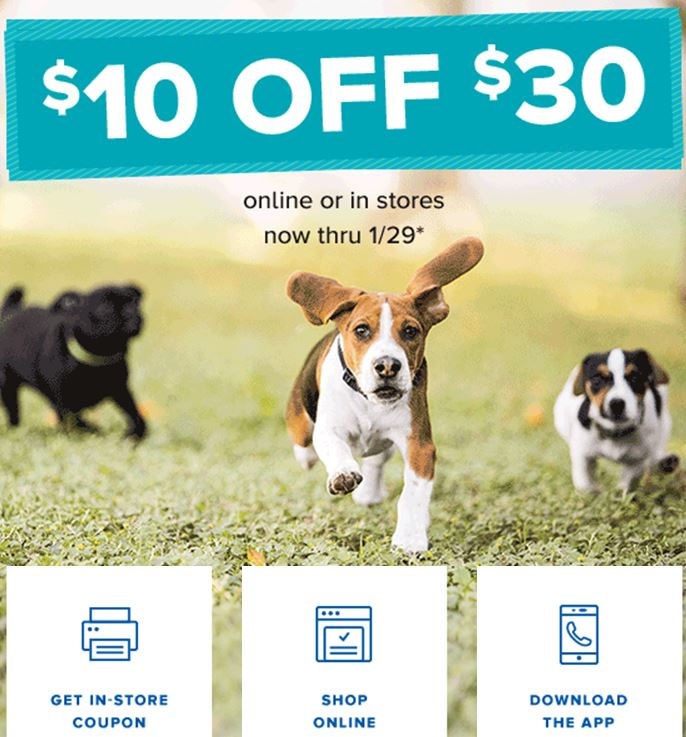 picture relating to Canidae Coupons Printable identified as E mail Coupon Archives - Site 3 of 5 - PennyWisePaws